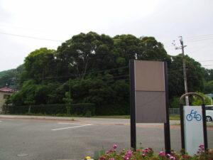 堅田神社(皇大神宮 摂社)の社叢