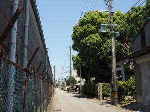 大口神社付近(伊勢市竹ケ鼻町)