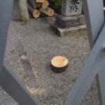社頭の鳥居が撤去された、一色神社(伊勢市一色町)