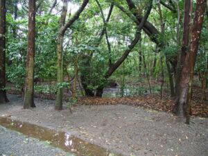 参道の途中にある池、御塩殿神社(皇大神宮 所管社)