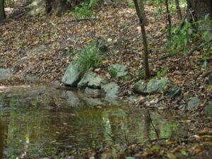 参道の途中にある池の石積み、御塩殿神社(皇大神宮 所管社)
