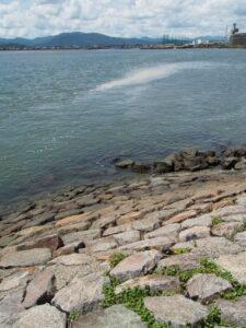 大湊海岸の東南部に残る石張り