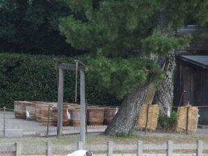 採取された鹹水が詰められた樽、御塩浜(伊勢市二見町西)