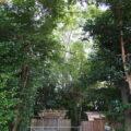 簀屋根を掛ける工事が始まった宇須乃野神社(豊受大神宮 摂社)